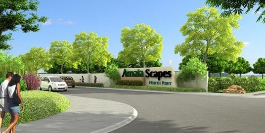 Amaia Scapes |  North Point